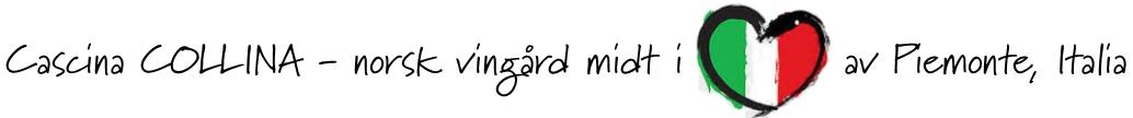 midt i hjertet